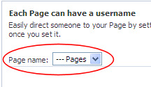 Page Name