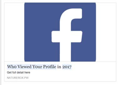 Who Viewed Your Profile in 2017