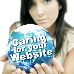 Caring for your website
